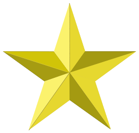282x270 Gold Star Clipart Synkee 2