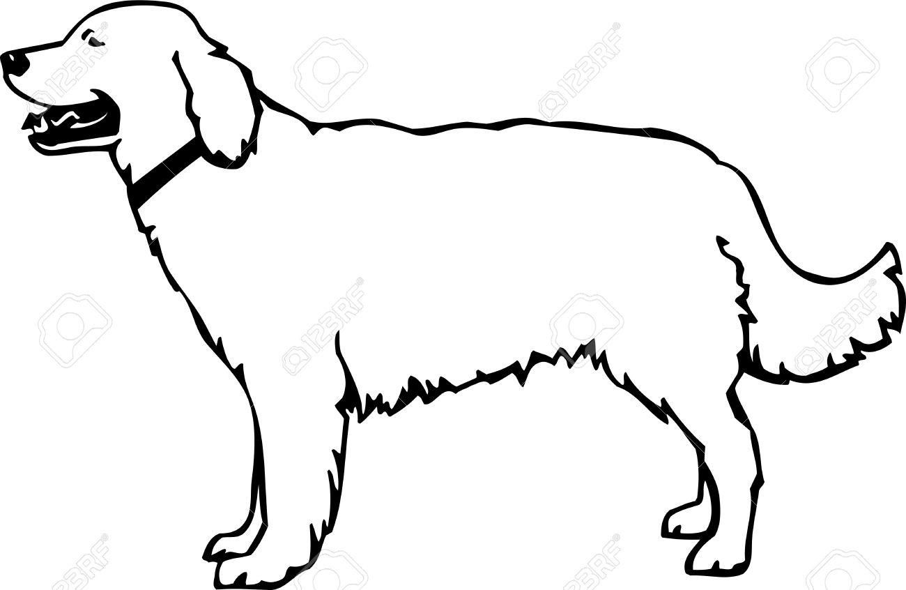 1300x846 Golden Retriever Clipart Animated