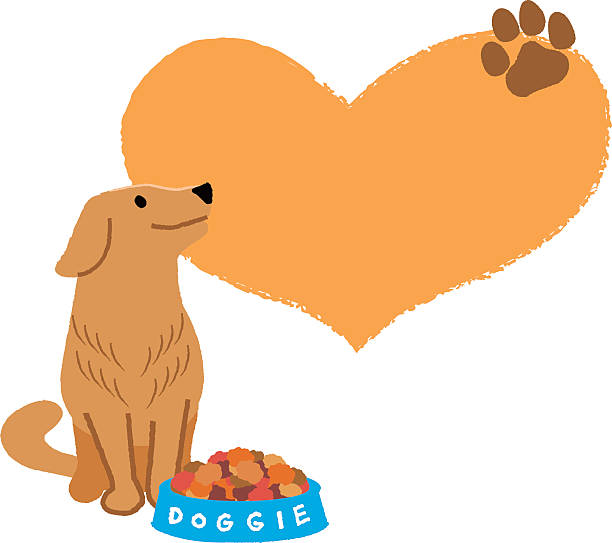 612x543 Golden Retriever Clipart Cartoon
