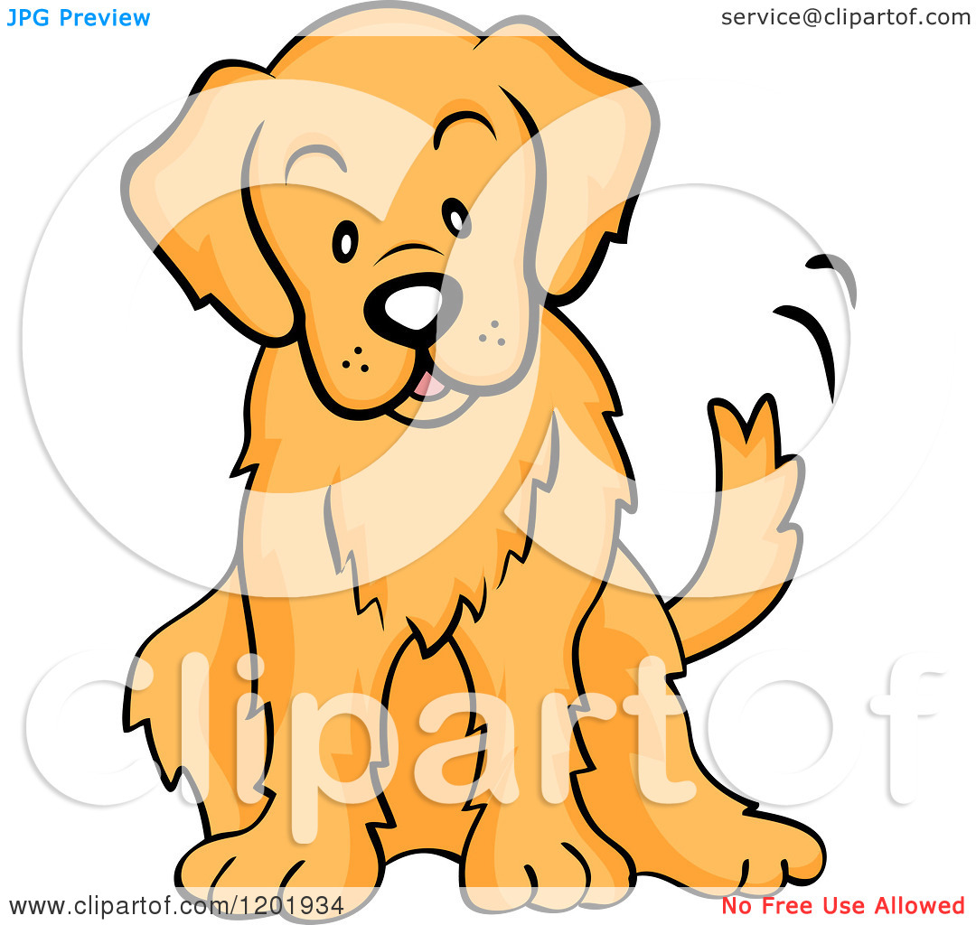 1080x1024 Golden Retriever Clipart Pet