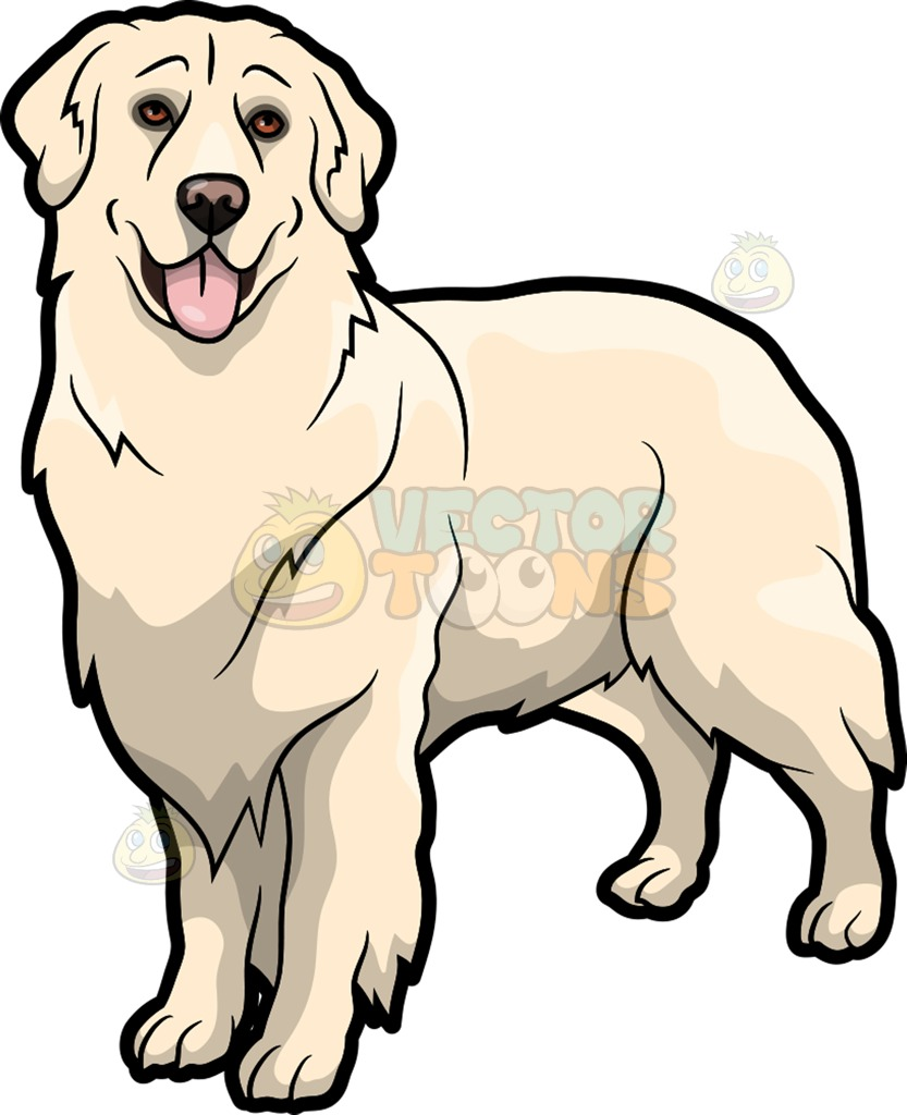 833x1024 Labrador Retriever Clipart Golden Retriever