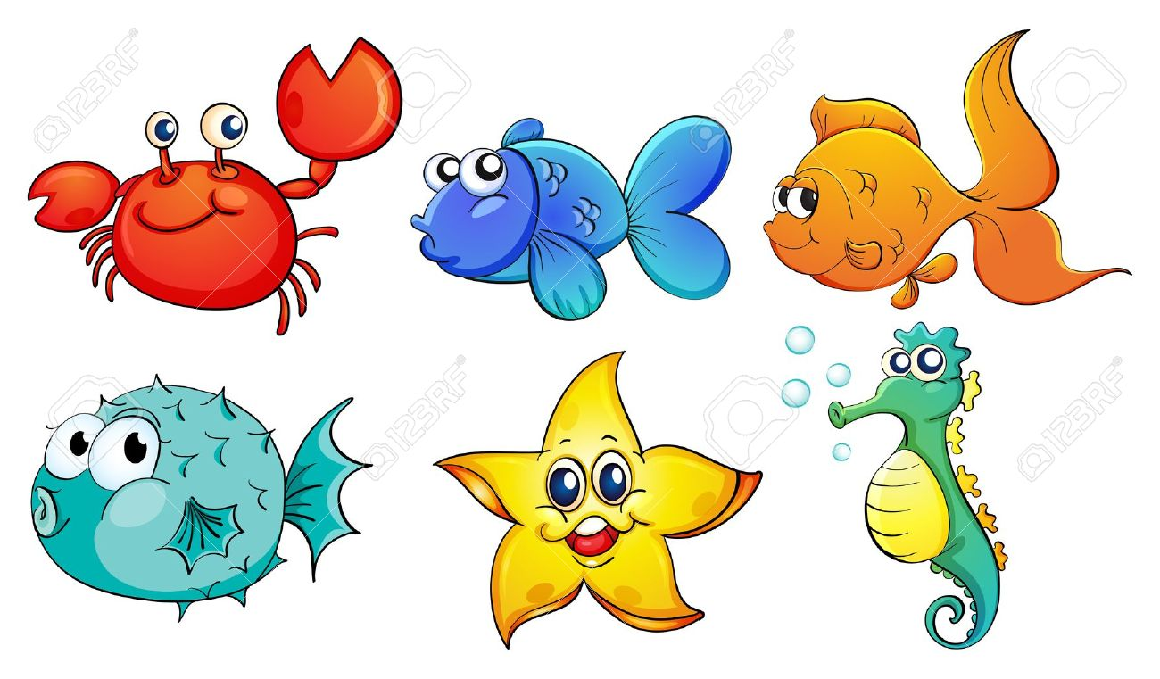1300x761 Sea Creatures Clipart