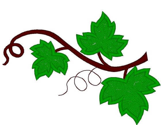 570x436 Grape Leaves Set Machine Embroidery Applique And Filled