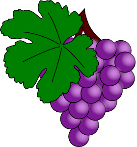 279x300 Grape With Vine Leaf Clip Art