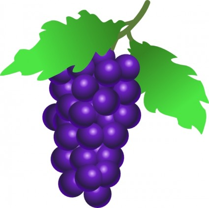 425x422 Grapes Vine Clip Art Vector Clip Art Free Vector Free Download
