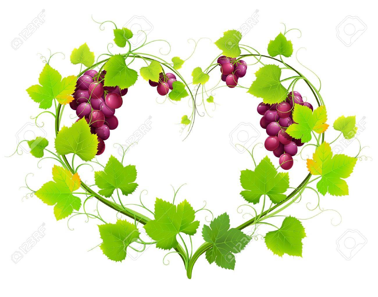 1300x1021 Grapes With Leaves In The Form Of Heart. Vector Royalty Free