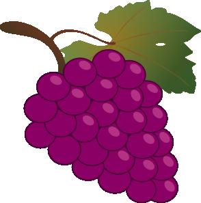 294x297 Grapes Clipart Grape Leaf