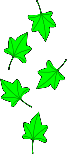 258x588 Green Grape Tree Leaves Clip Art