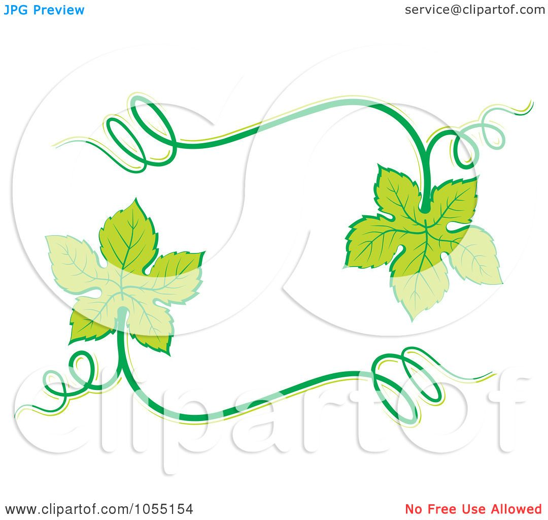 1080x1024 Royalty Free Vector Clip Art Illustration Of A Frame Of Grape