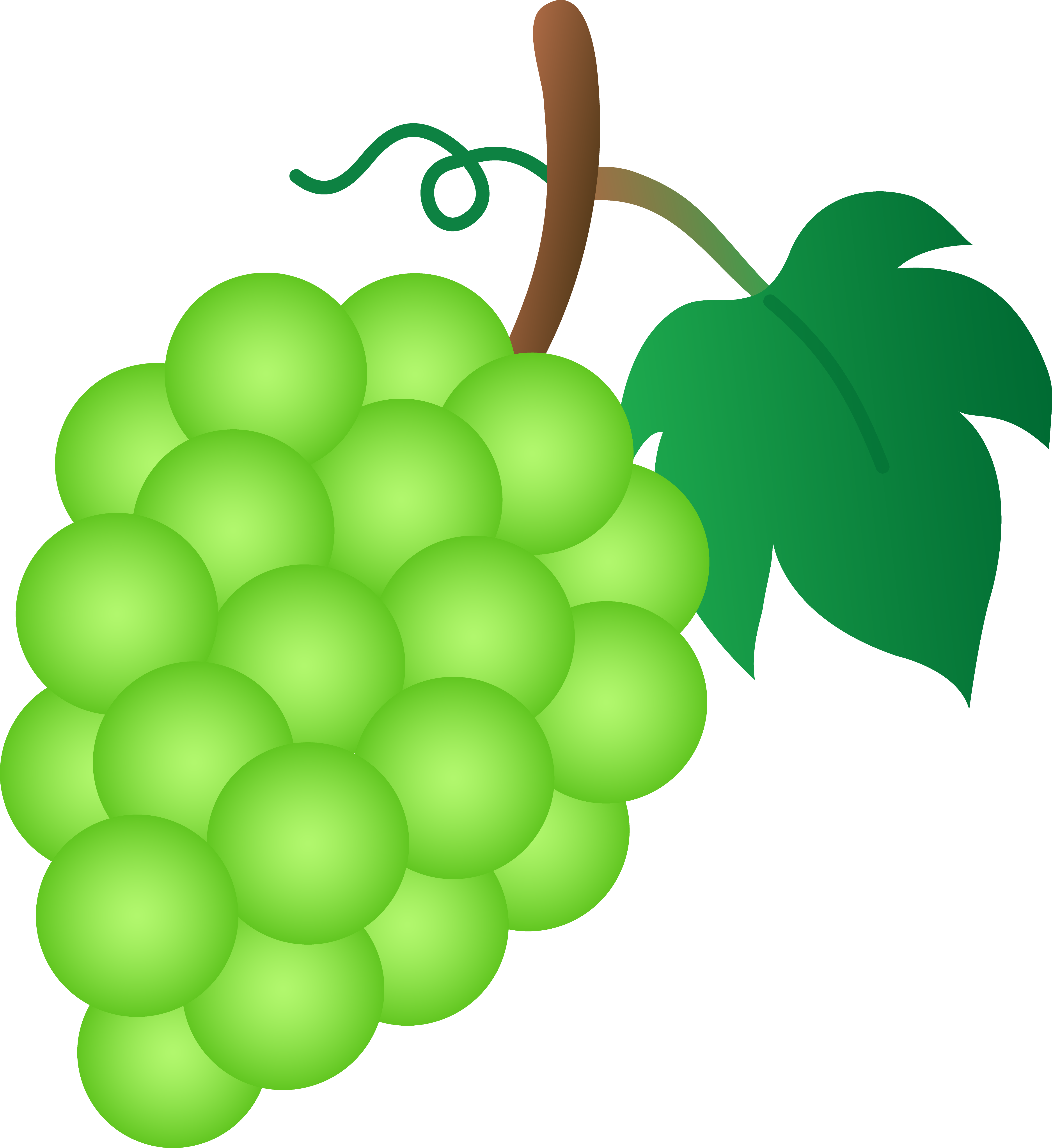 4801x5243 Bunch Of Green Grapes