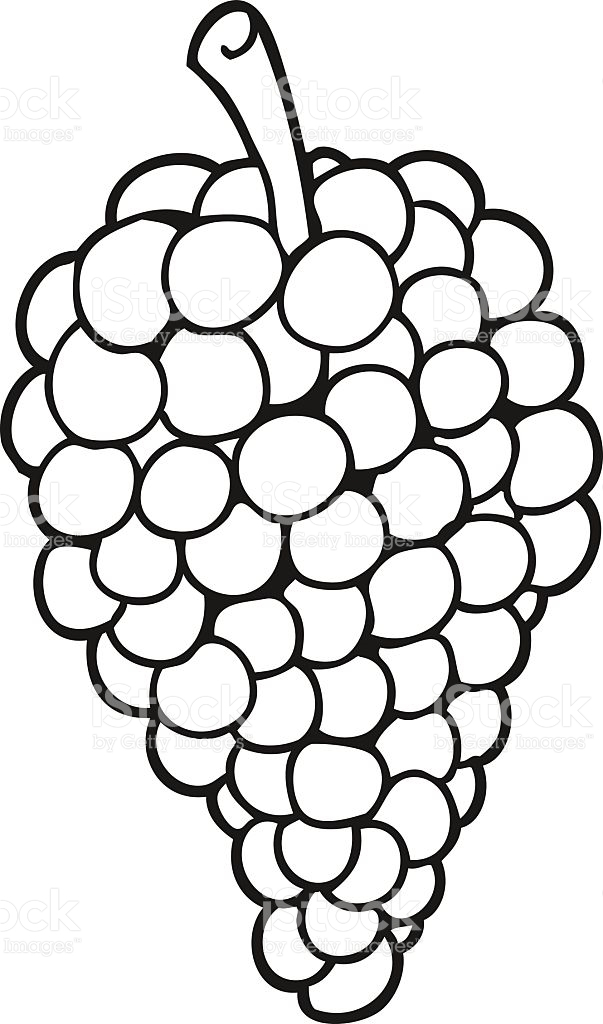 Grapes Black And White