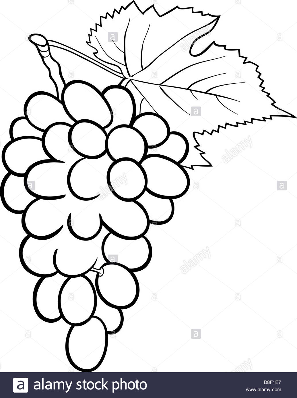Grapes Drawing | Free download best Grapes Drawing on ClipArtMag.com for Grapes Animated  75sfw
