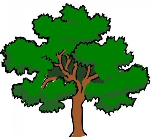 520x461 Tree Clip Art Clip Art, Autumn Trees And Tree Art