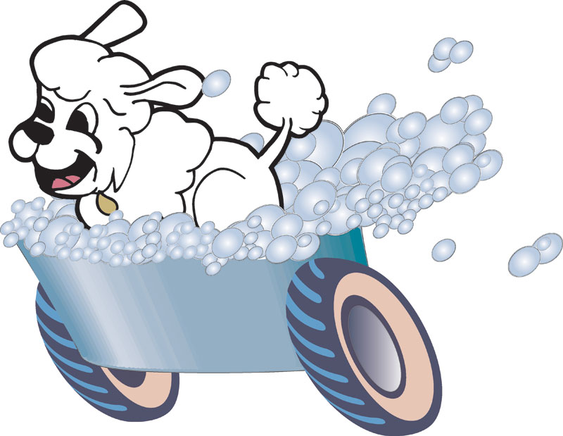 800x619 Graphics For Dog Wash Graphics