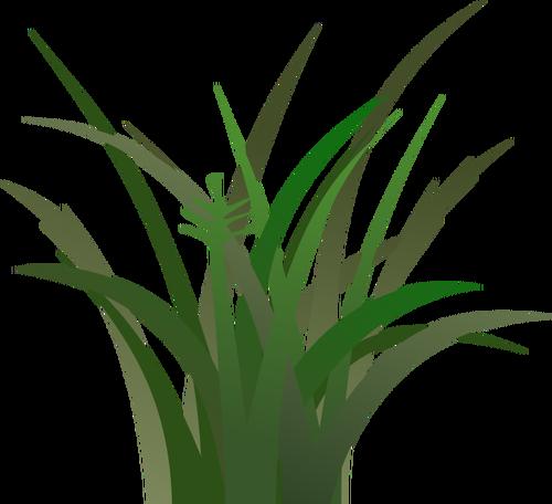 Grass Background Clipart