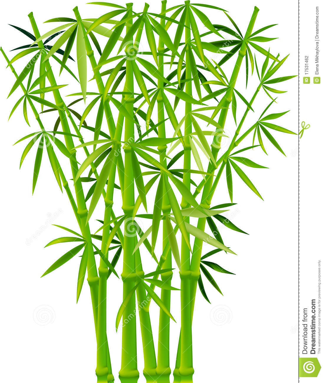 1102x1300 Bamboo Clipart Bamboo Forest