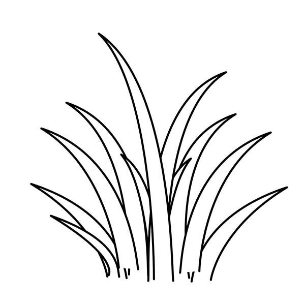 Grass Clipart Black And White | Free download best Grass ...