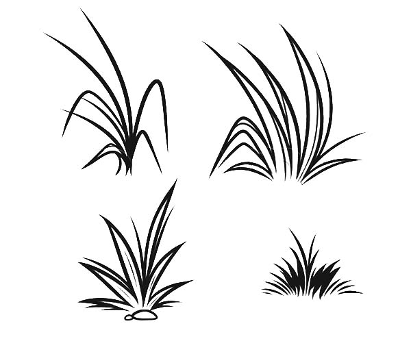 coloring pages with grass-#21