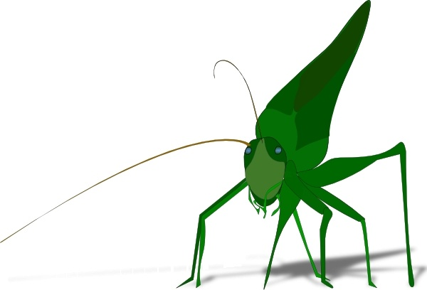 600x408 Grasshopper Clip Art Free Vector In Open Office Drawing Svg ( Svg