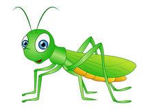 213x160 Grasshopper Clipart