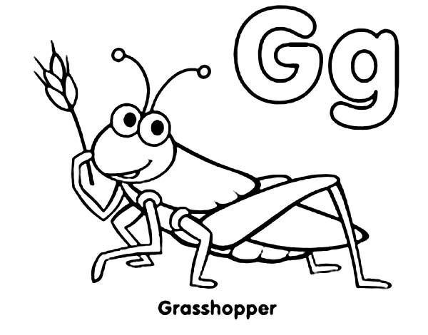 600x470 Exciting Grasshopper Coloring Page 33 About Remodel Coloring Books