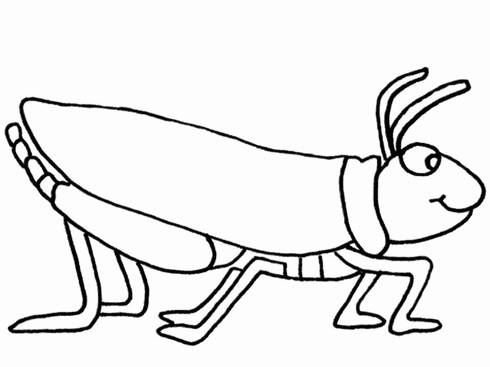 957x718 Grasshopper