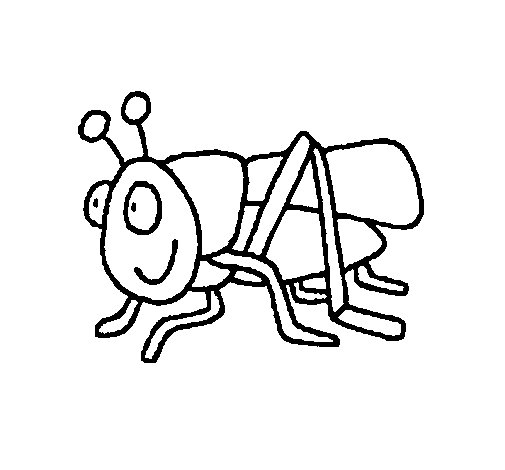 505x470 Grasshopper 2 Coloring Page