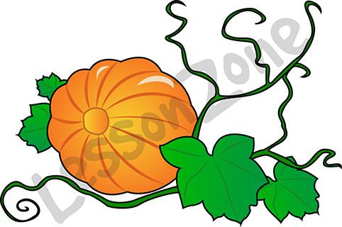 482x320 Drawn Pumpkin Vine
