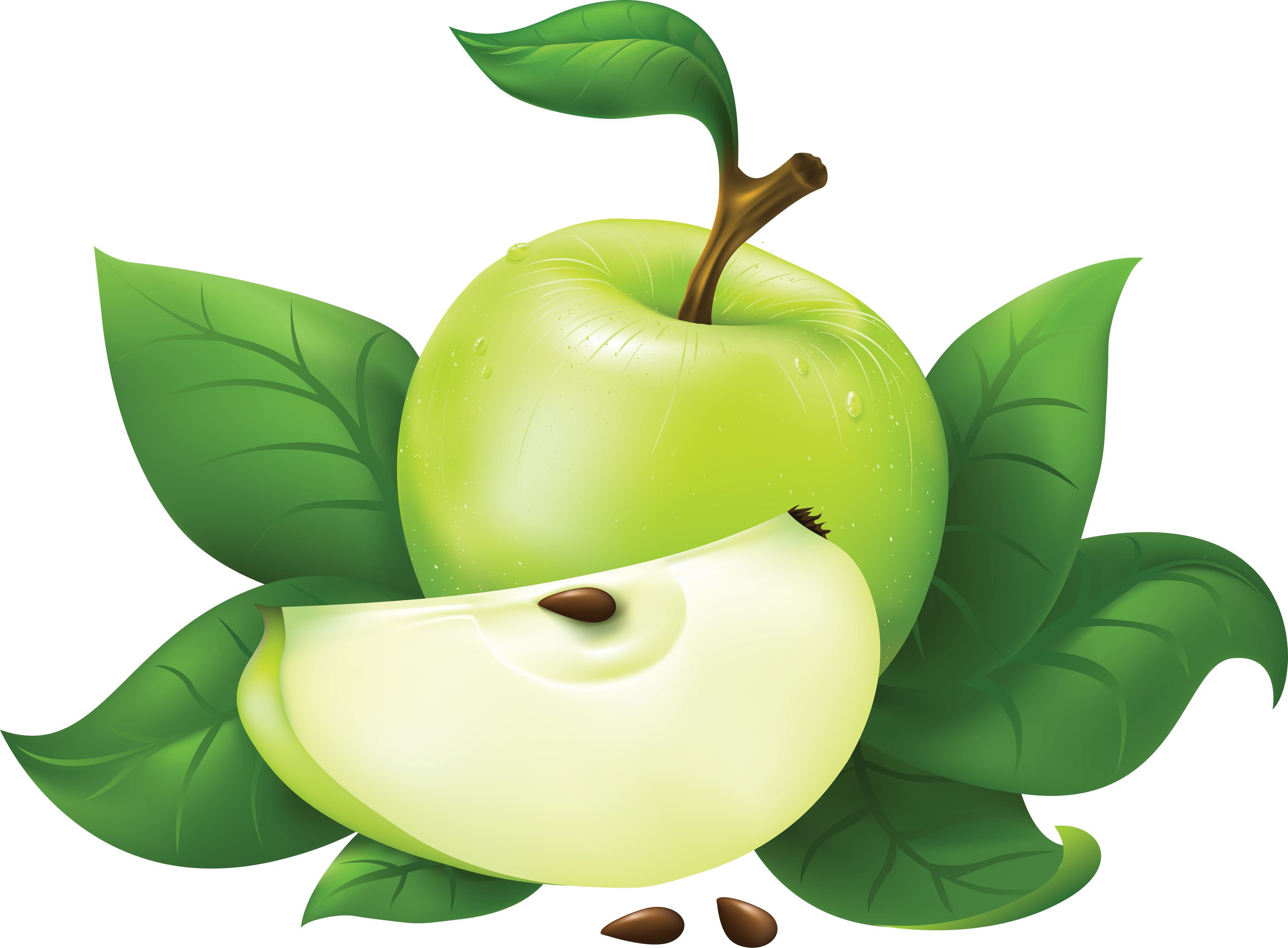 3497x2576 Download Green Apple Clipart