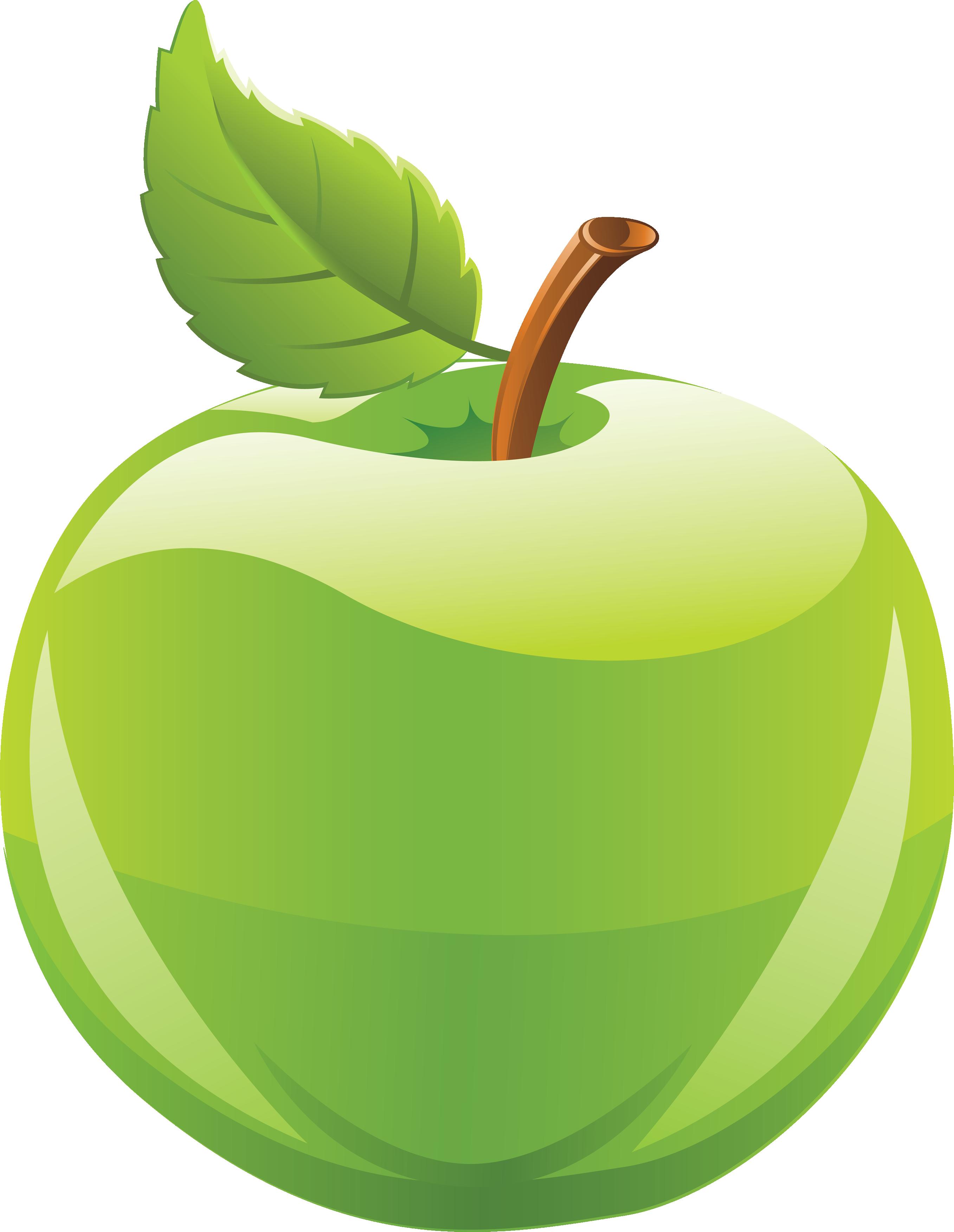 2714x3504 Fruits Green Apple Clipart