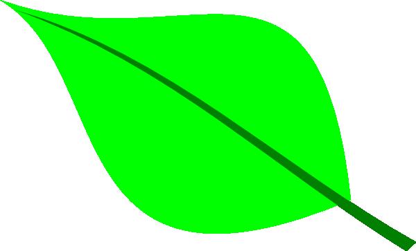 600x363 Foliage Clipart Apple Leaf