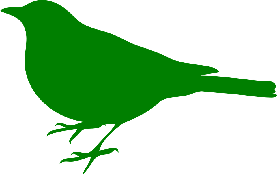 960x608 Songbird Clipart Green Bird
