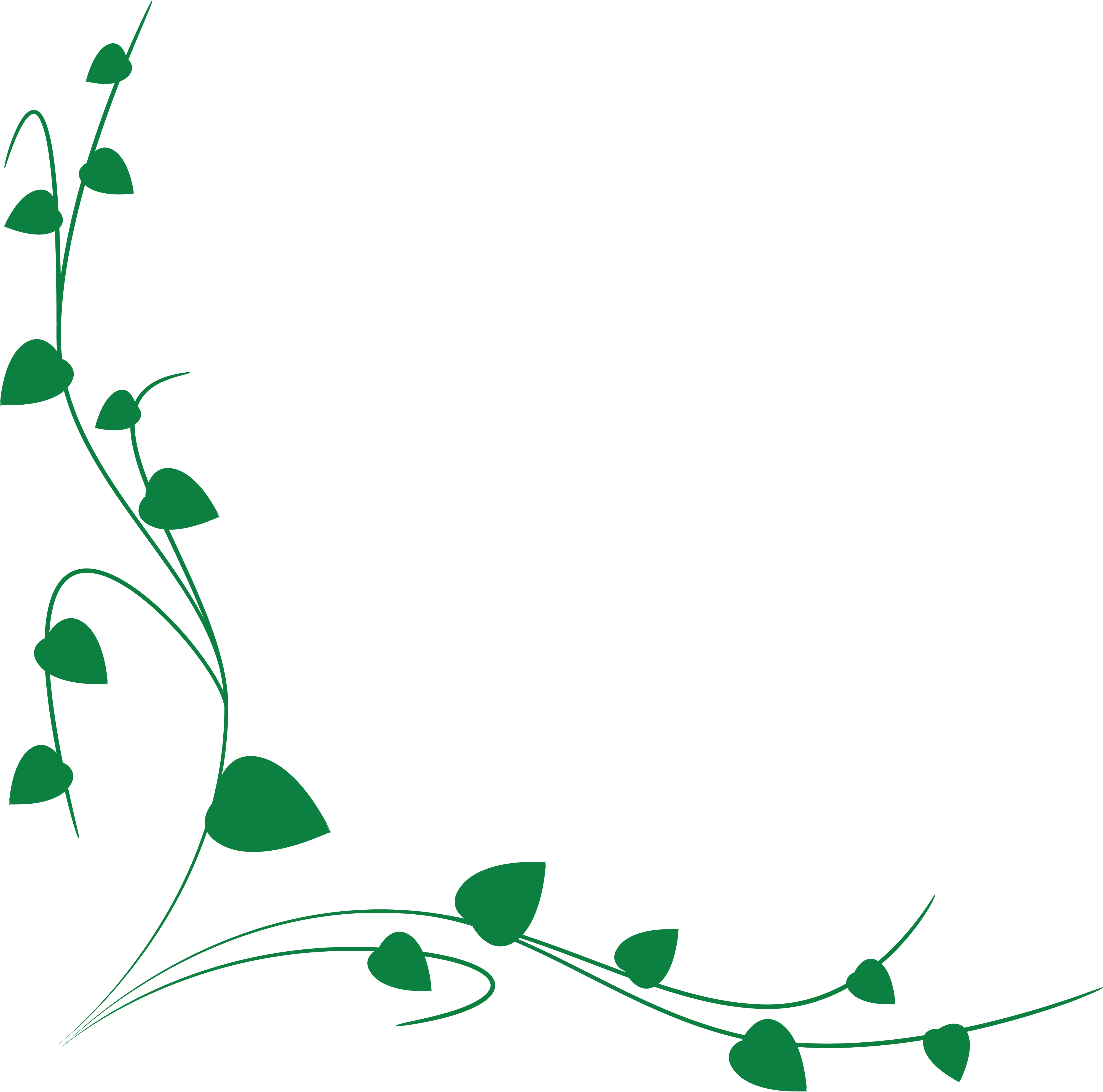 4000x3959 Free Clipart Of A Green Vine Border
