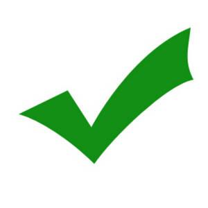 300x300 Green Check Mark Clip Art
