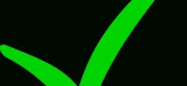 272x125 Light Green Check Mark Clip Art