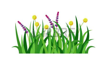 450x273 Green Grass Showing Roots. Green Grass With Earth Crosscut. Grass