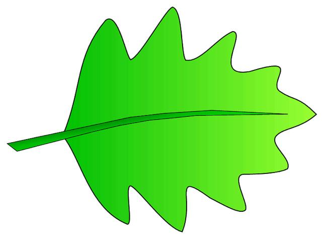 640x482 Green Leaf Clip Art