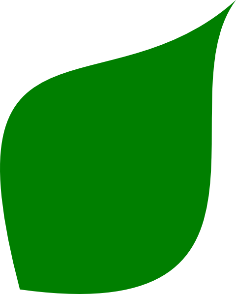 480x598 Green Leaf Clip Art