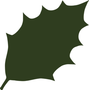 297x299 Green Leaf Clipart