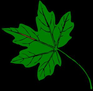 298x291 Green Maple Leaf Clip Art
