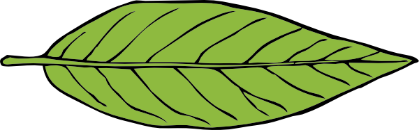 600x187 Leaf Clipart