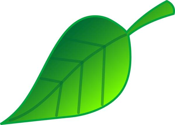 600x429 Leaves Clipart Green Leaf