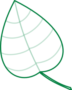 240x300 Geen Leaf Outline Clipart