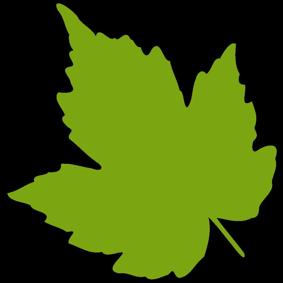 900x900 Green Leaf Clip Art
