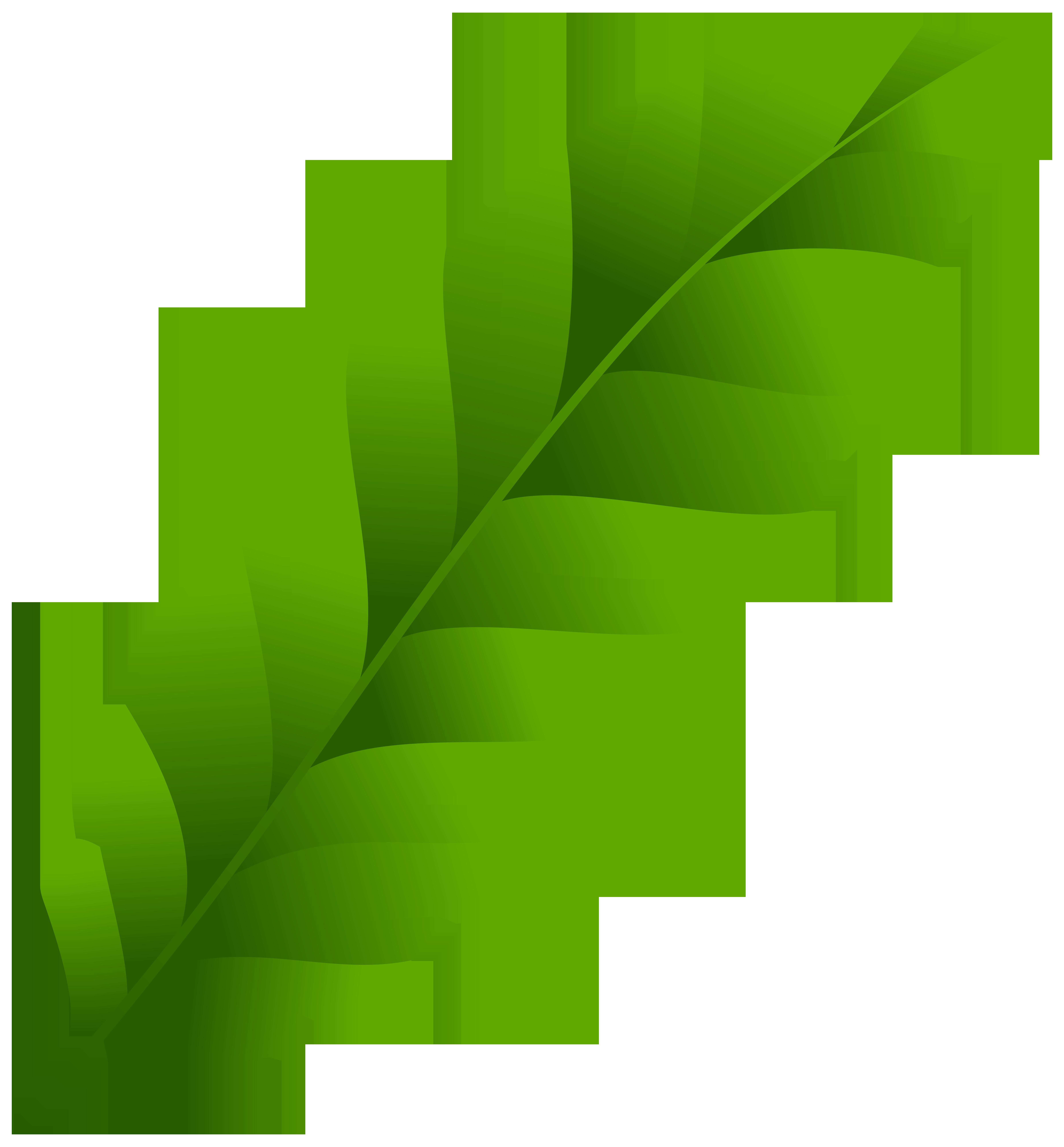 7423x8000 Green Leaf PNG Clip Art