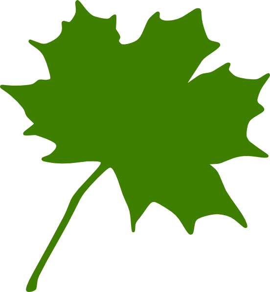 552x597 Green Maple Leaf Clip Art