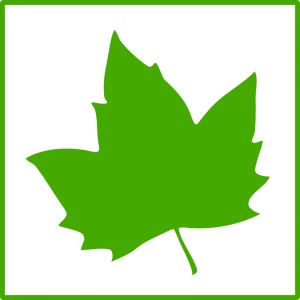 300x300 Leaf clipart green leaf