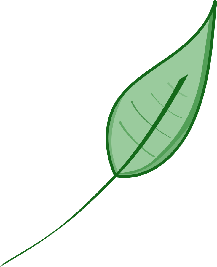 732x900 Leaf green leaves clip art dromgdi top