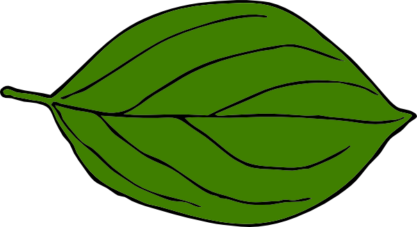 600x327 Dark Green Oval Leaf Clip Art