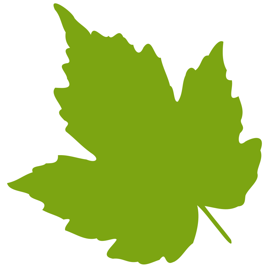 900x900 Green Leaf Clip Art